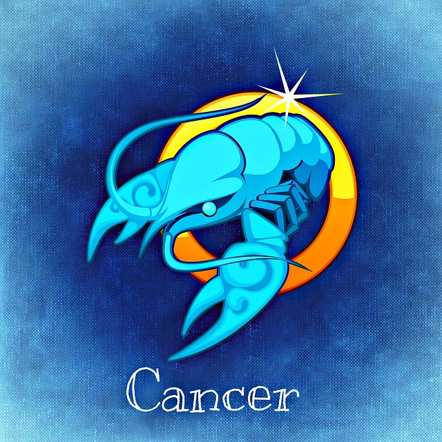 horoscope 2019 prediction